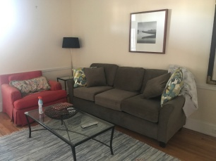 So I bought this couch for $300 from Amazon!